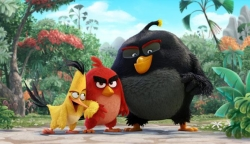 Angry Birds 2016 photo.